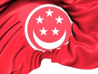 新加坡调查网站